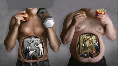 Fitness Metabolica